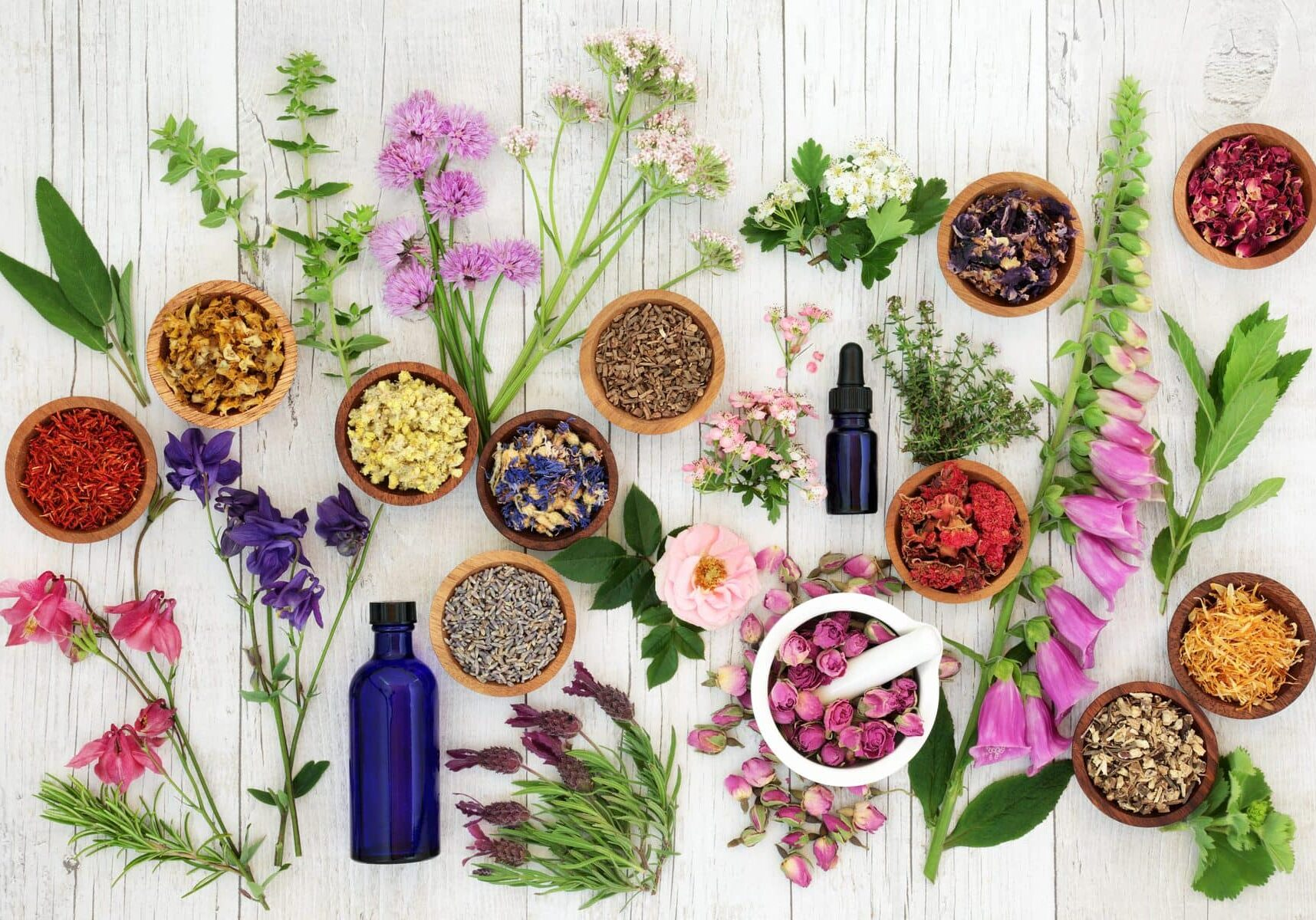 Natural herbal medicine selection with herbs and flowers in wooden bowls and loose, glass aromatherapy essential oil bottles and mortar with pestle on rustoic wood background. Top view.